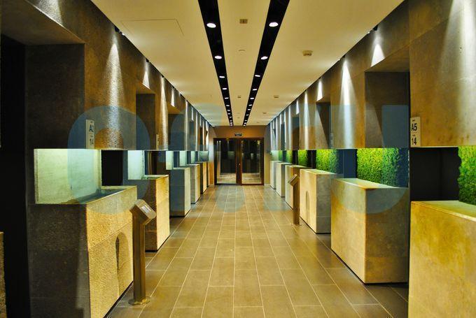 Дизайн лифтовых холлов вбашне Федерация «Восток»