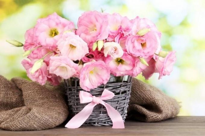 Что делать, чтобы цветы ввазе стояли дольше?