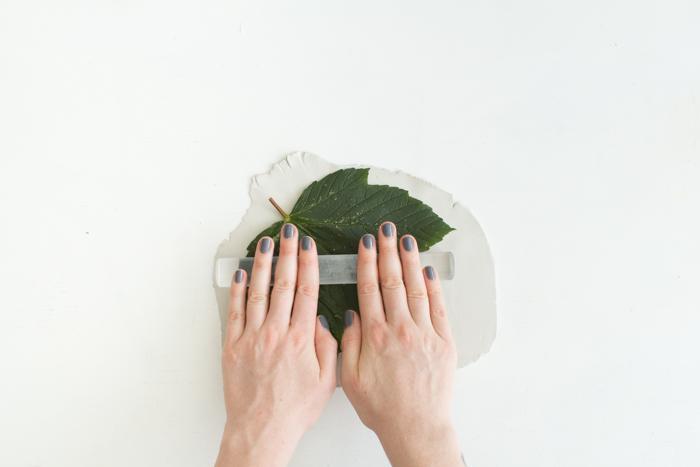Оттиск листьев
