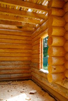 Дом из сосны