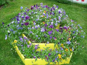садовые дорожки, клумбы и цветники