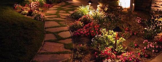 Подсветка растений в саду