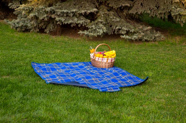 6необходимых вещей для стильного икомфортного пикника