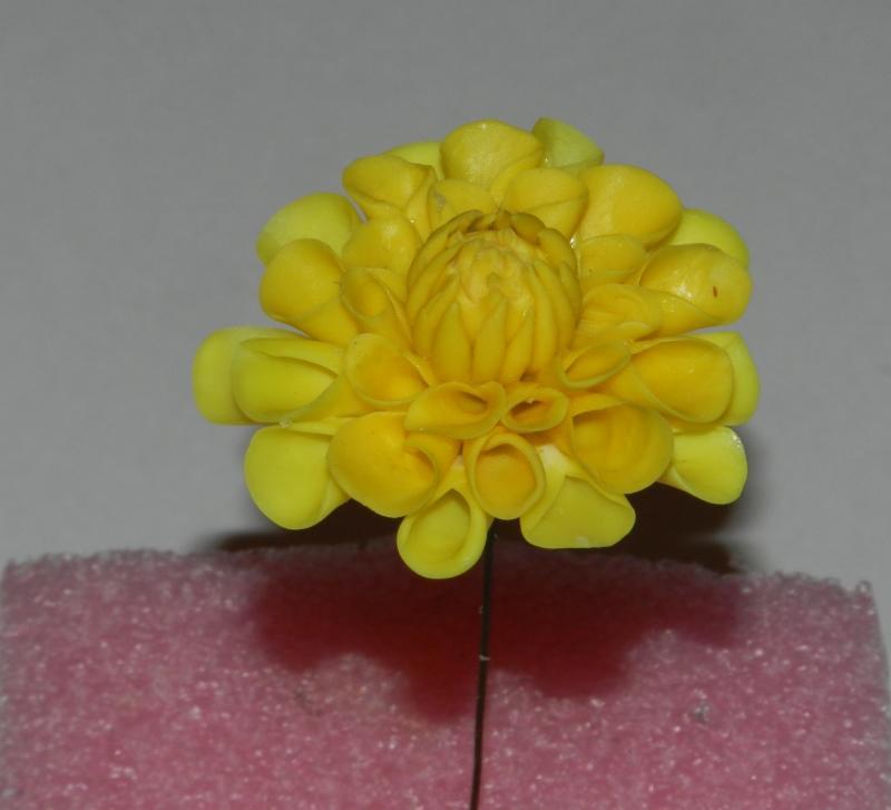 Желтый георгин