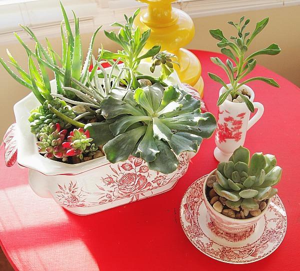 Необычные цветочные горшки для кактусов исуккулентов