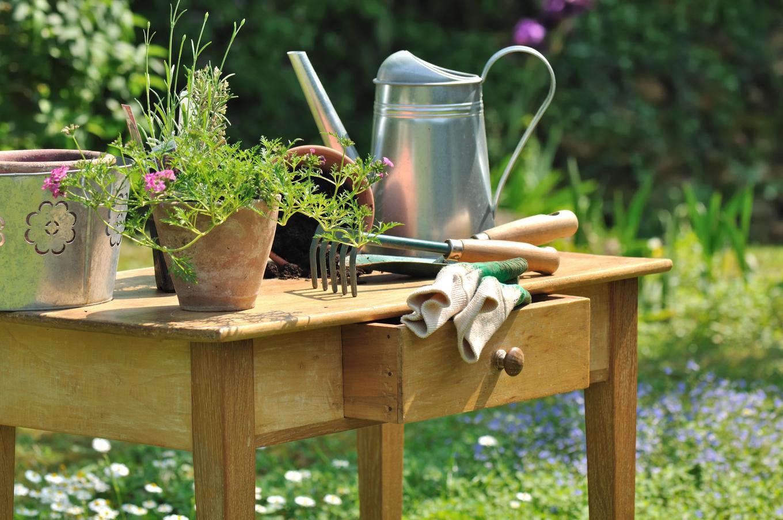 Набор необходимых инструментов для начинающих садоводов