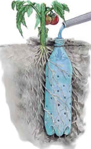 Домашние растения автополив своими руками
