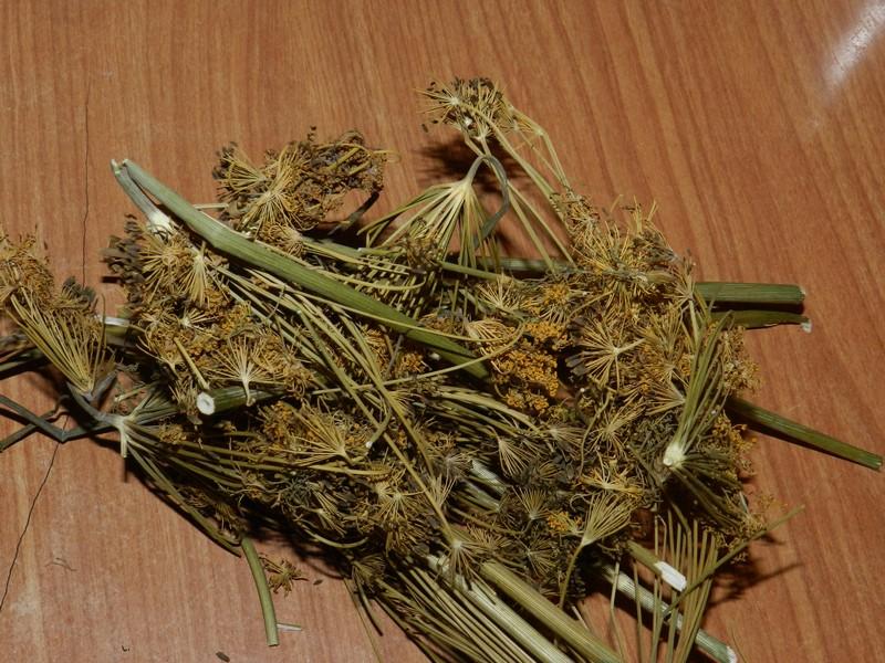 Хранение трав