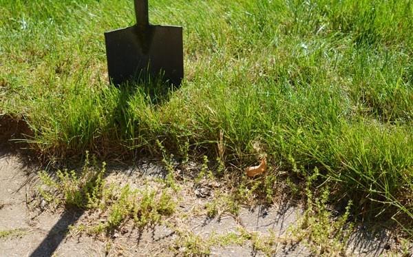 Ремонт садовой дорожки иорганизация клумбы