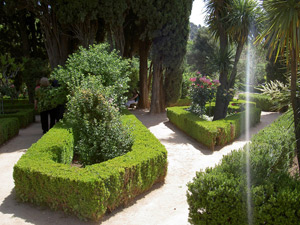 Декоративный регулярный огород