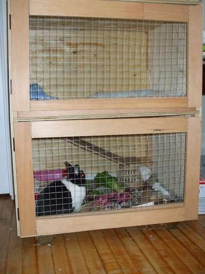 Как построить клетку для домашнего кролика своими руками 38