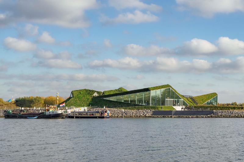 Музей вНидерландах покрылся травой