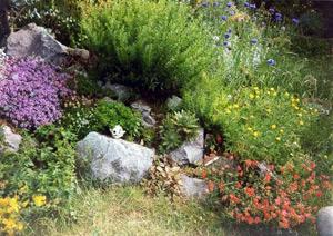 Альпийская горка в саду