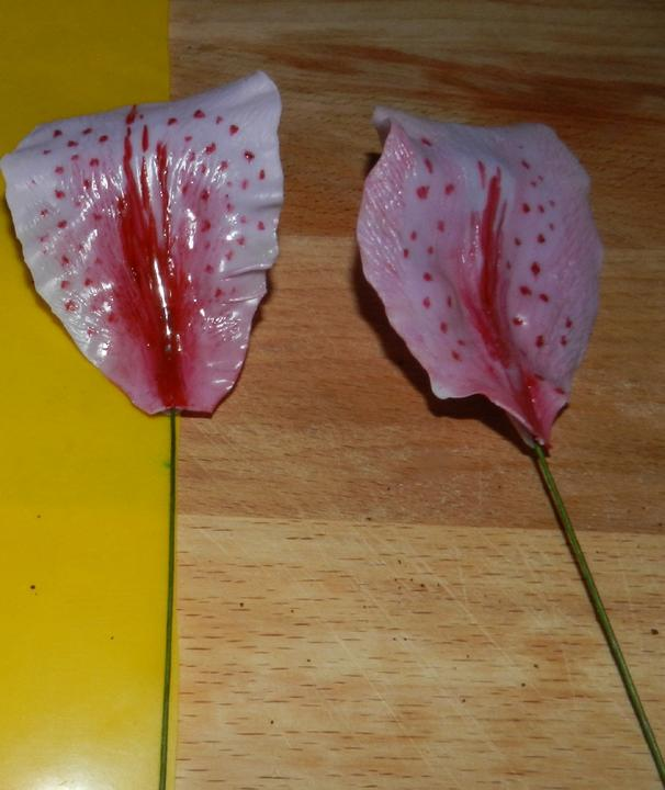Лепестки лилии