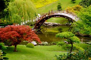 Мостики в японском саду