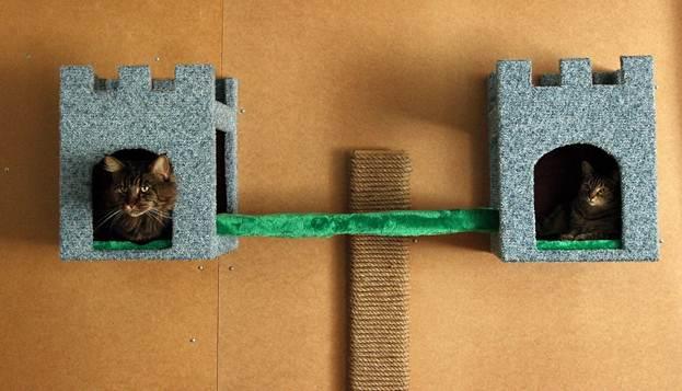 Настенный домик для кошек фото