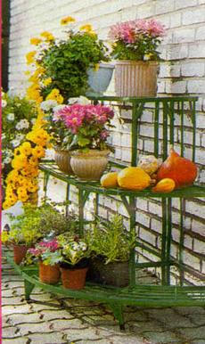 Цветы на балконе озеленение балконов