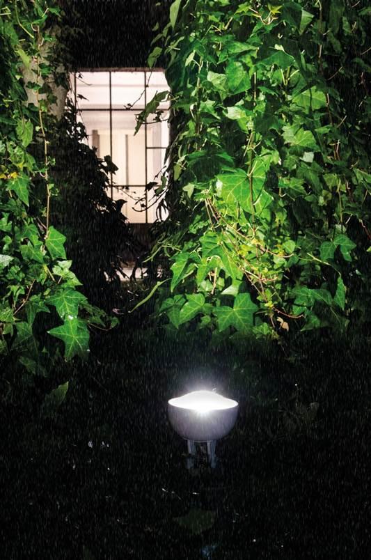 Нижняя подсветка растений