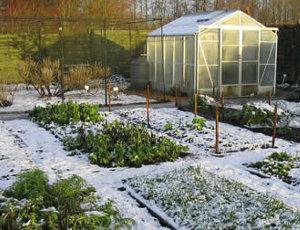 Картинки робота в саду и огороде весной