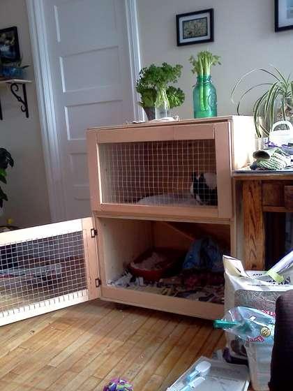 Построить клетку кроликов своими руками