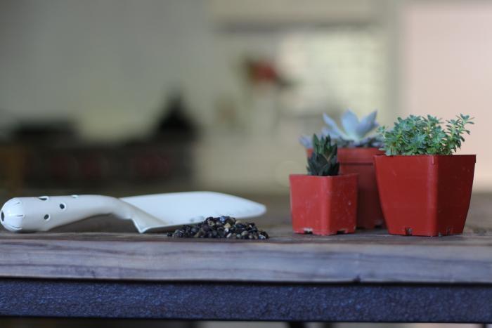 Как обновить старые цветочные горшки