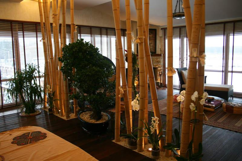 Бамбук винтерьере