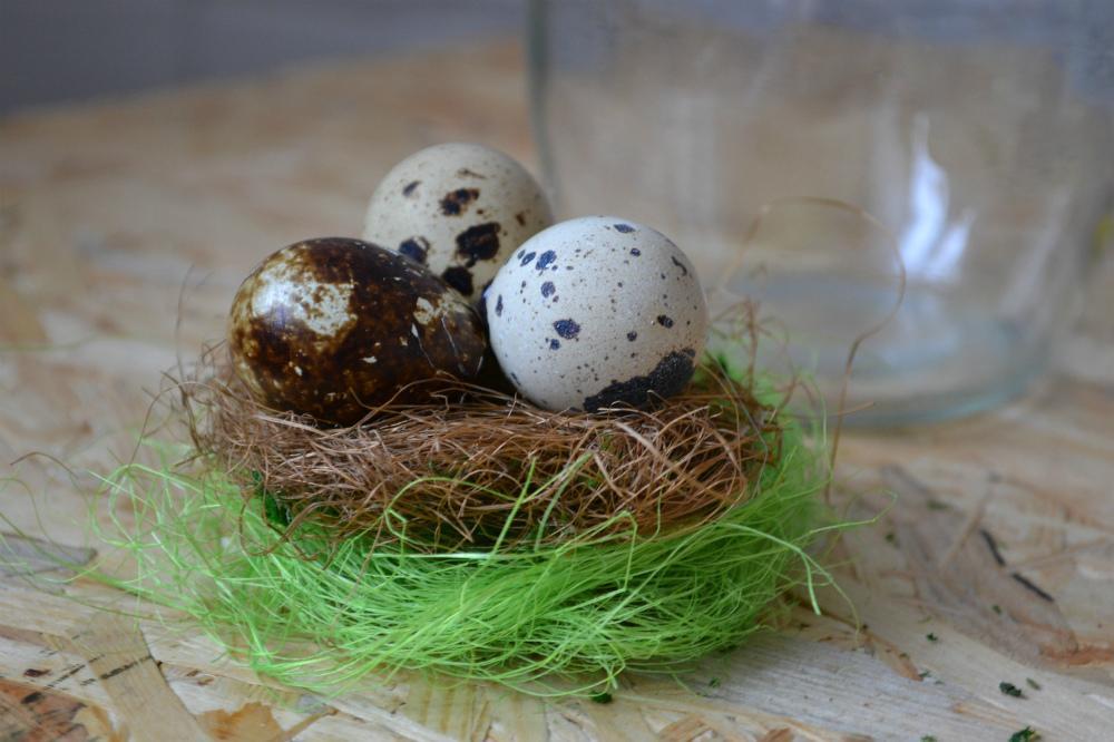 Гнездо своими руками поделка из веревки