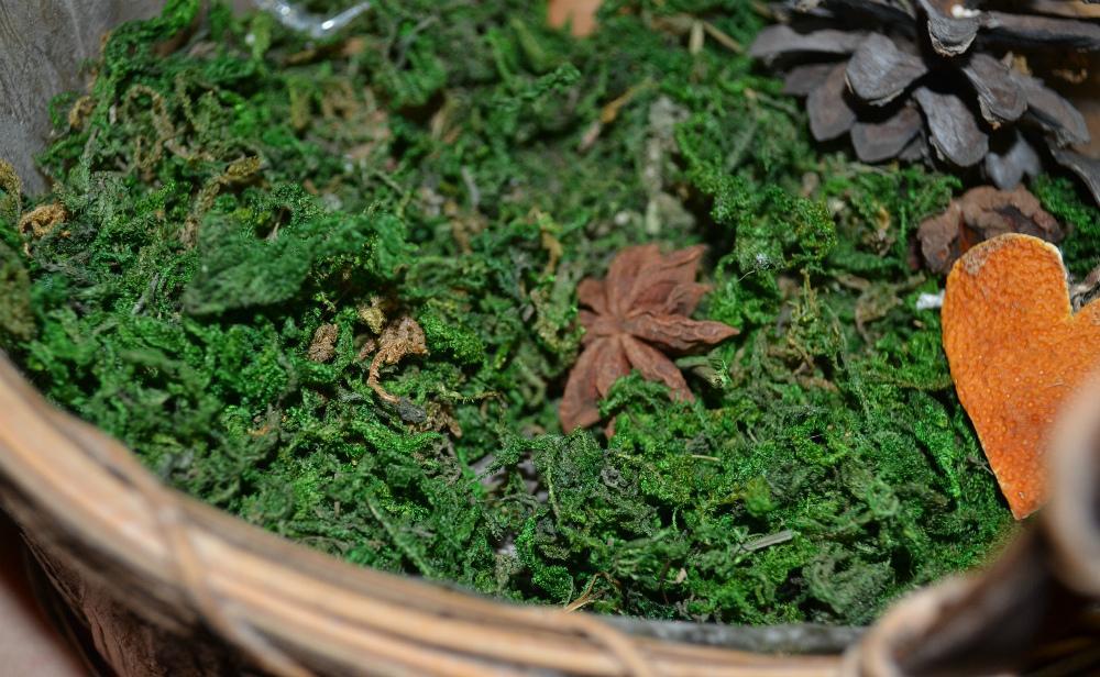 Натуральный мох