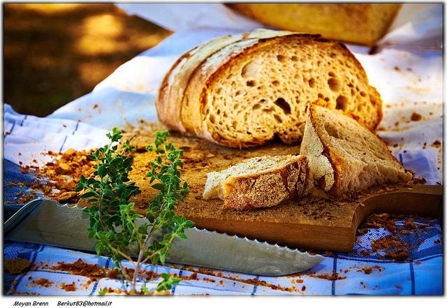 красивые бутерброды фото