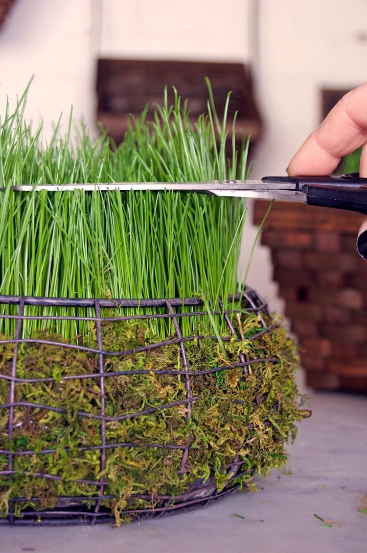 Декоративная корзинка сживой травой имхом